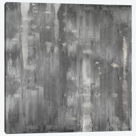 Variations In Grey 3-Piece Canvas #JTU12} by Justin Turner Canvas Wall Art