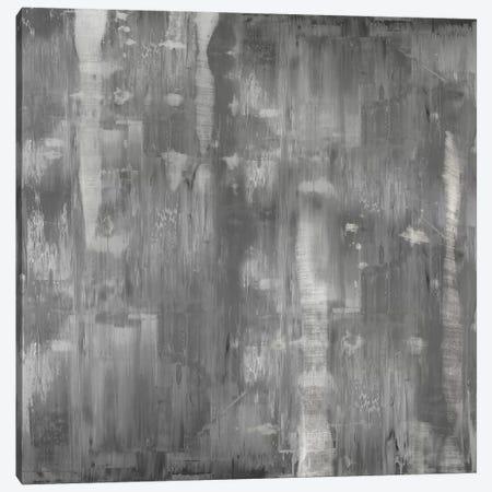 Variations In Grey Canvas Print #JTU12} by Justin Turner Canvas Wall Art