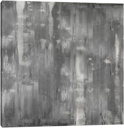 Variations In Grey Canvas Art Print