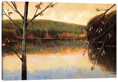 From The Lakeshore Canvas Art Print