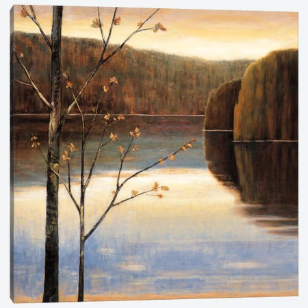 Lakeside I Canvas Print #JUA2} by Justin Adams Canvas Art Print