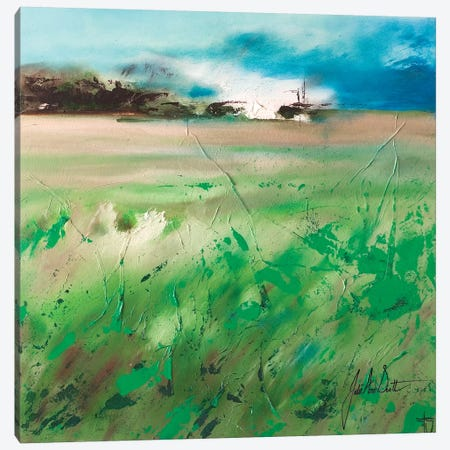 Fields of Joy IV Canvas Print #JUI18} by Julie Ann Scott Canvas Art Print
