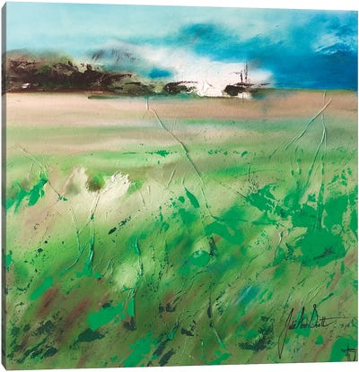 Fields of Joy IV Canvas Art Print