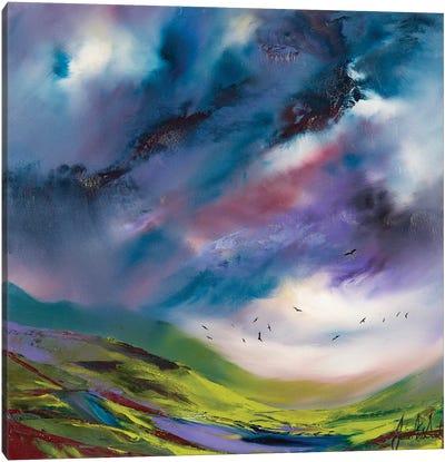 Flights Fancy VI Canvas Art Print