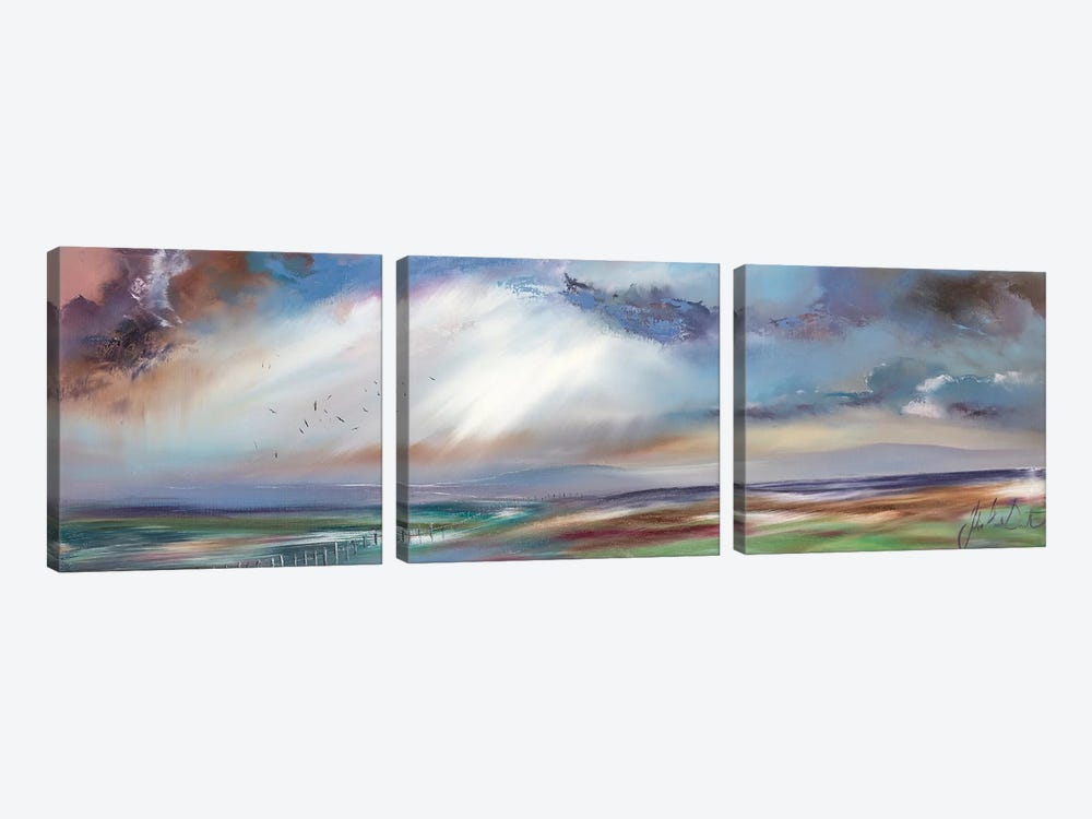 Horizons of Hope II by Julie Ann Scott 3-piece Art Print