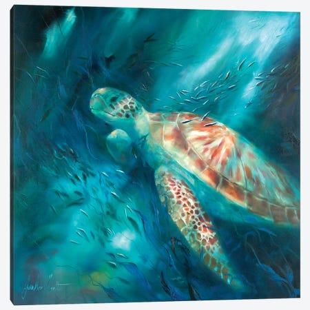 Seas of Tranquility VI Canvas Print #JUI42} by Julie Ann Scott Canvas Wall Art