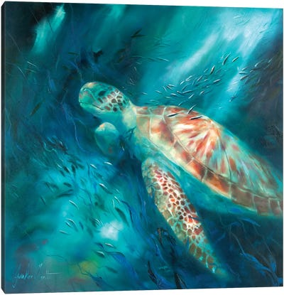 Seas of Tranquility VI Canvas Art Print