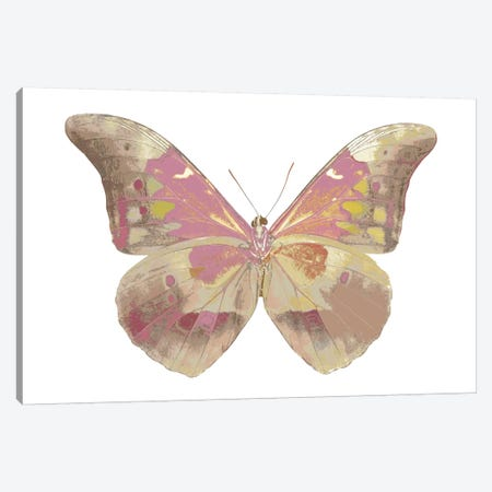 Butterfly In Grey IV Canvas Print #JUL10} by Julia Bosco Canvas Art