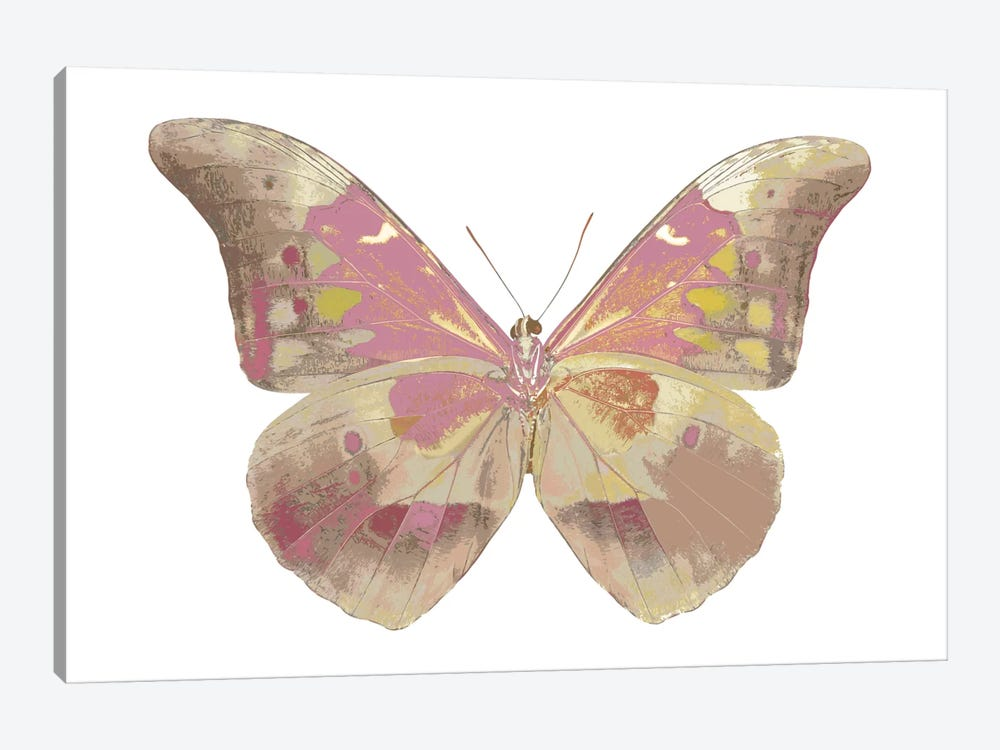 Butterfly In Grey IV by Julia Bosco 1-piece Canvas Wall Art