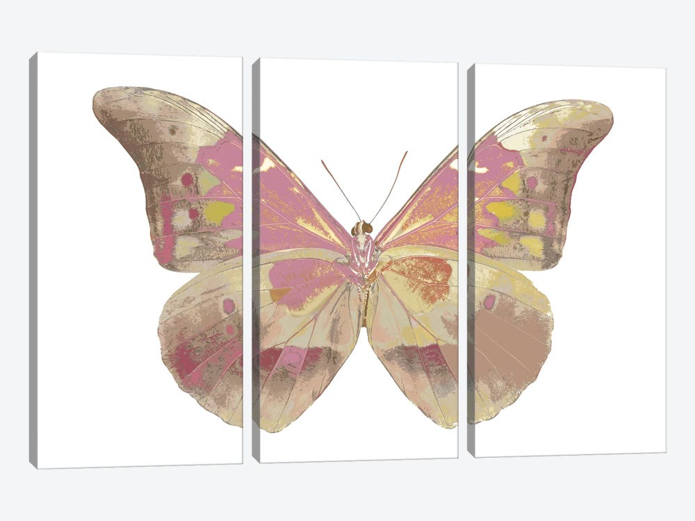 Butterfly In Grey IV by Julia Bosco 3-piece Canvas Artwork