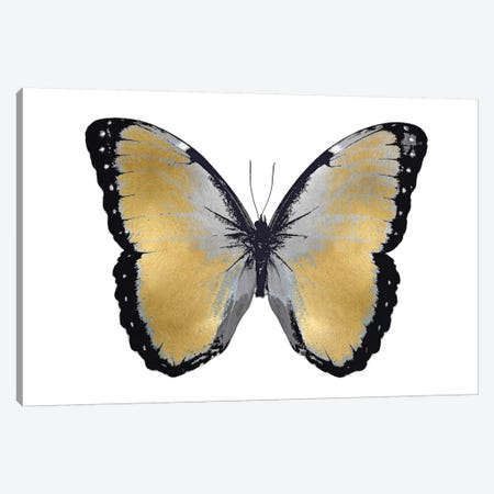Butterfly In Metallic I Canvas Print #JUL12} by Julia Bosco Canvas Artwork