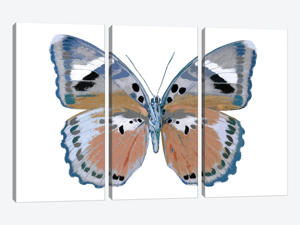 Butterfly In Pink II 3-piece Canvas Print
