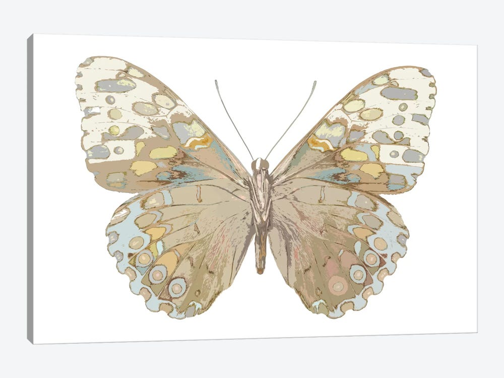 Butterfly In Taupe And Blue by Julia Bosco 1-piece Canvas Wall Art