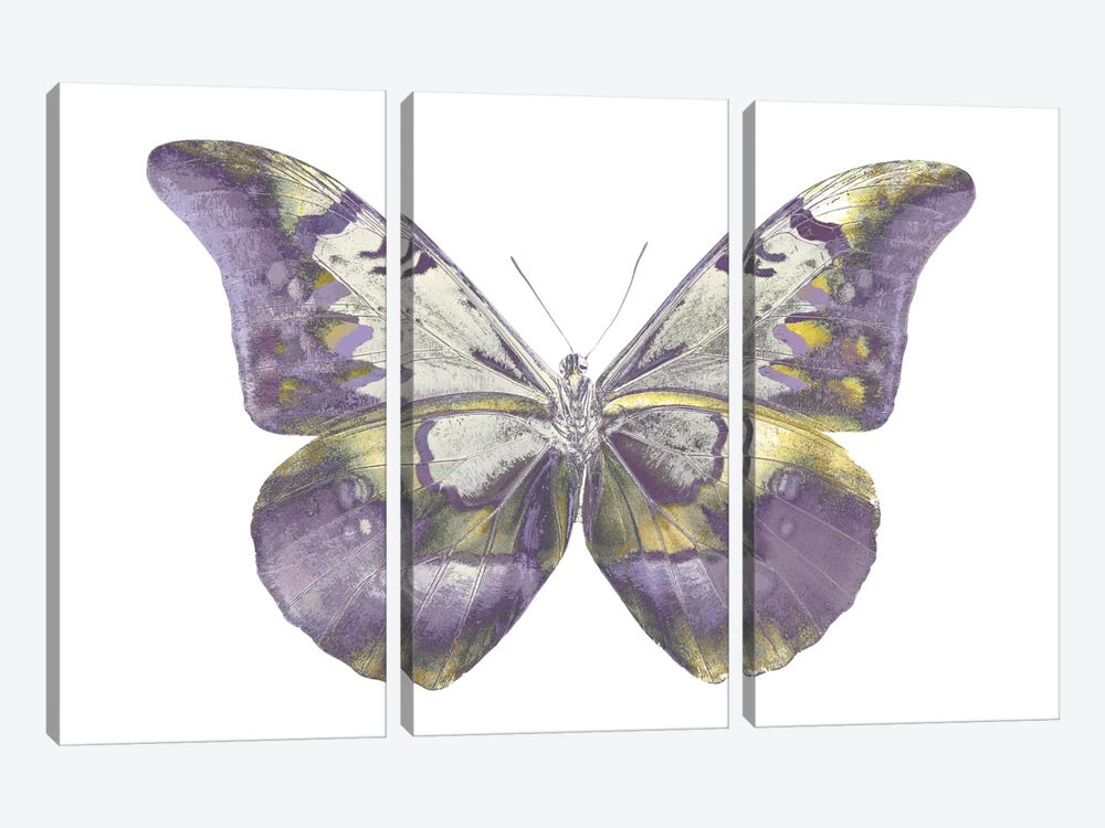 Butterfly In Teal And Blue 3-piece Canvas Art Print
