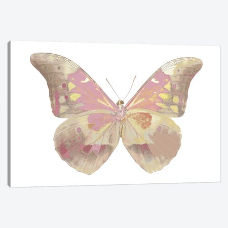 Butterfly In Teal I Canvas Print #JUL18} by Julia Bosco Canvas Art