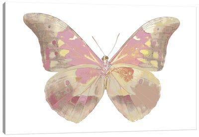 Butterfly In Teal I Canvas Art Print