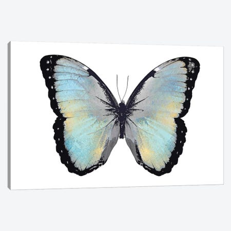 Blue Hue Butterfly Canvas Print #JUL1} by Julia Bosco Canvas Wall Art