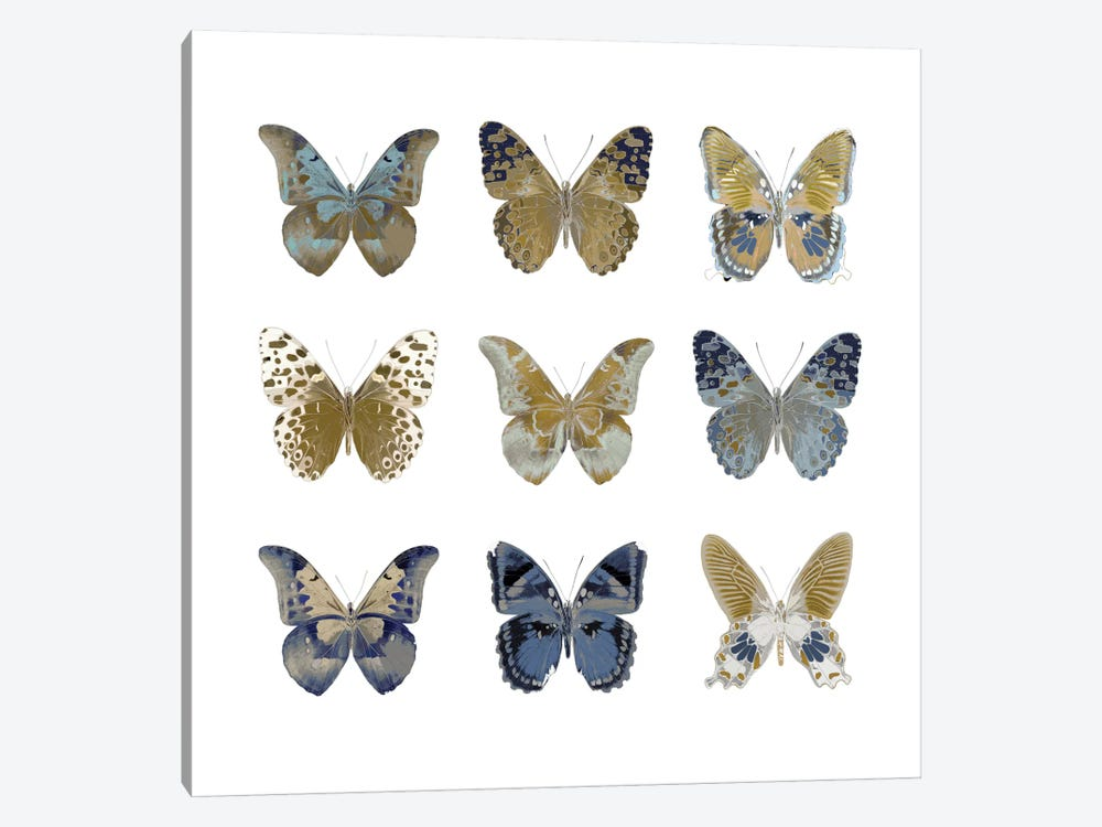 Butterfly Study I by Julia Bosco 1-piece Canvas Art Print