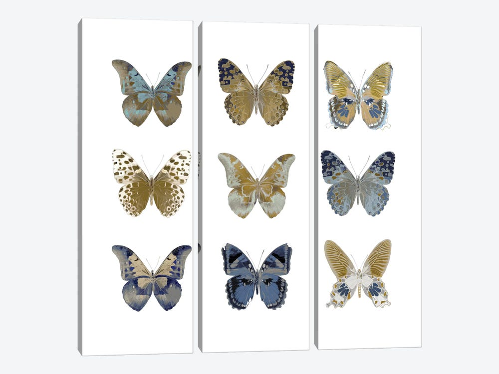 Butterfly Study I 3-piece Canvas Art Print