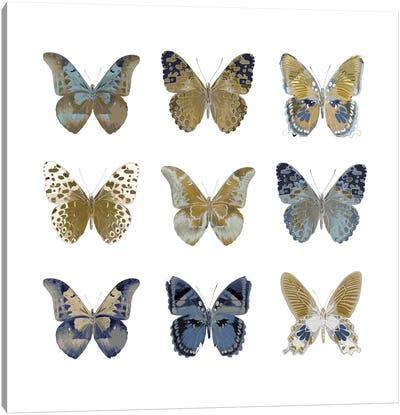 Butterfly Study I Canvas Print #JUL20