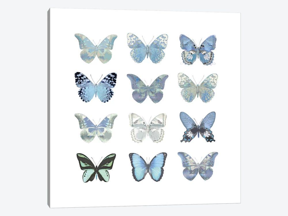 Butterfly Study In Blue I 1-piece Canvas Wall Art