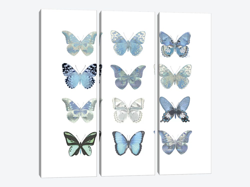 Butterfly Study In Blue I 3-piece Canvas Art