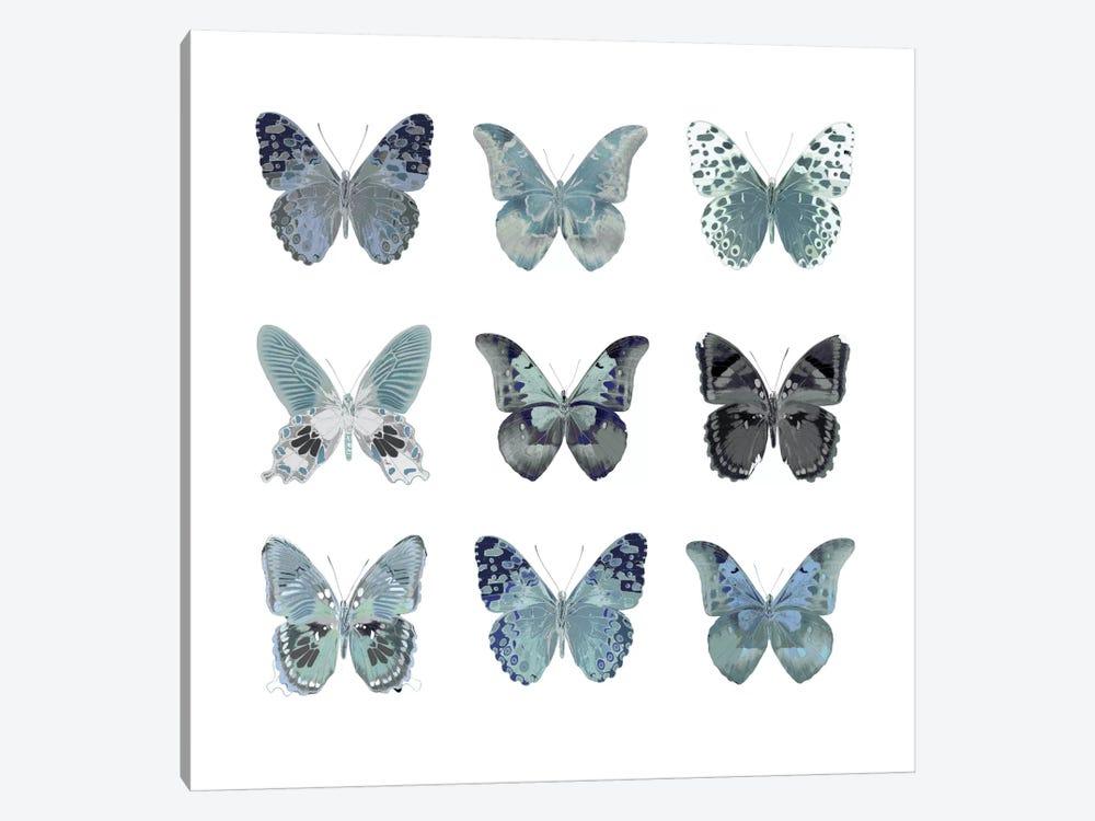 Butterfly Study In Blue II by Julia Bosco 1-piece Canvas Print