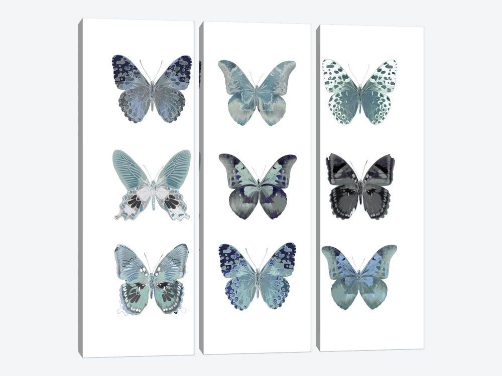 Butterfly Study In Blue II by Julia Bosco 3-piece Canvas Print