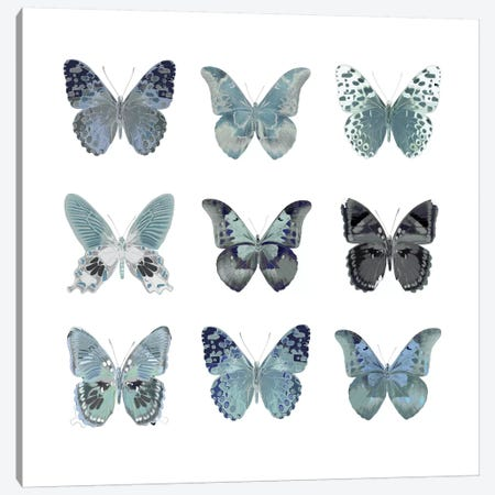 Butterfly Study In Blue II Canvas Print #JUL24} by Julia Bosco Canvas Wall Art