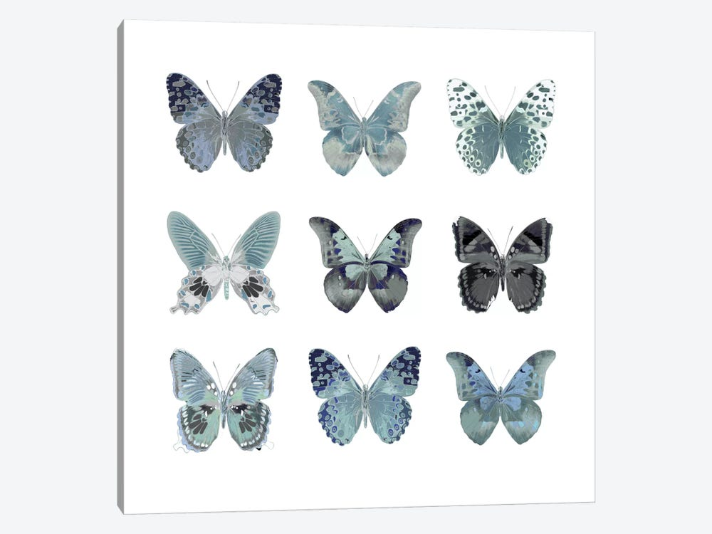 Butterfly Study In Blue II by Julia Bosco 1-piece Canvas Print