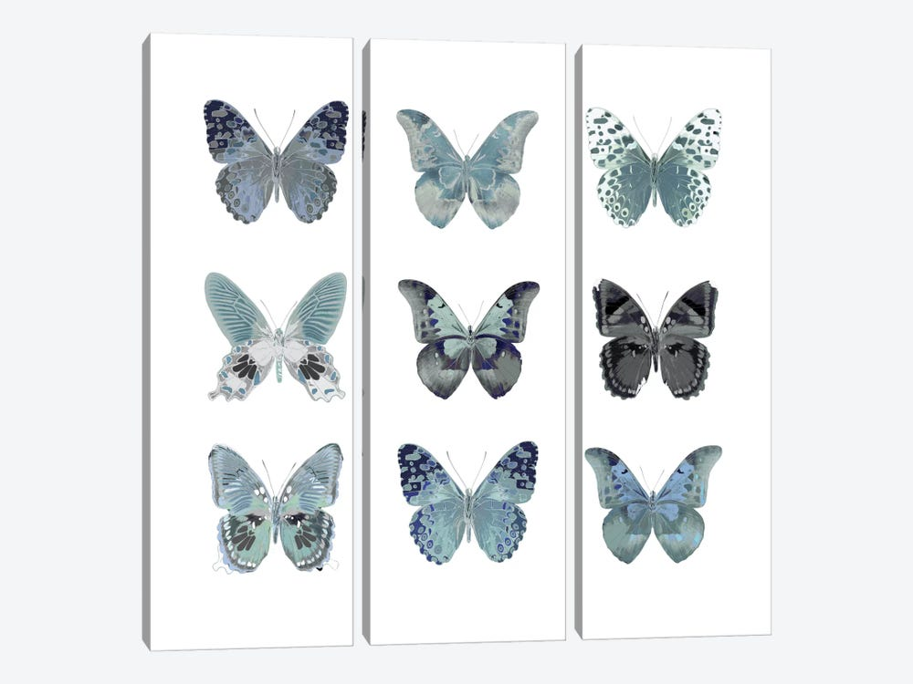 Butterfly Study In Blue II by Julia Bosco 3-piece Canvas Print