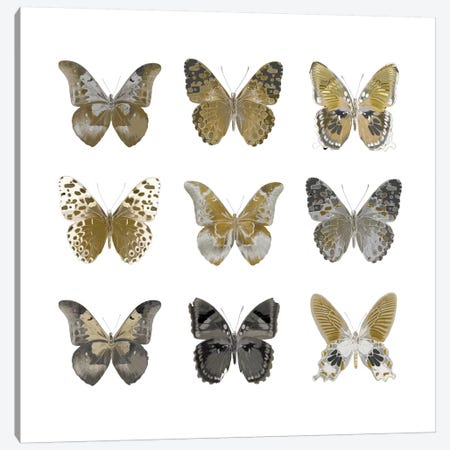 Butterfly Study In Gold I Canvas Print #JUL25} by Julia Bosco Canvas Art