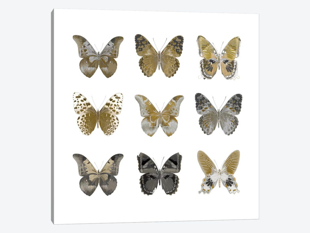 Butterfly Study In Gold I 1-piece Canvas Art