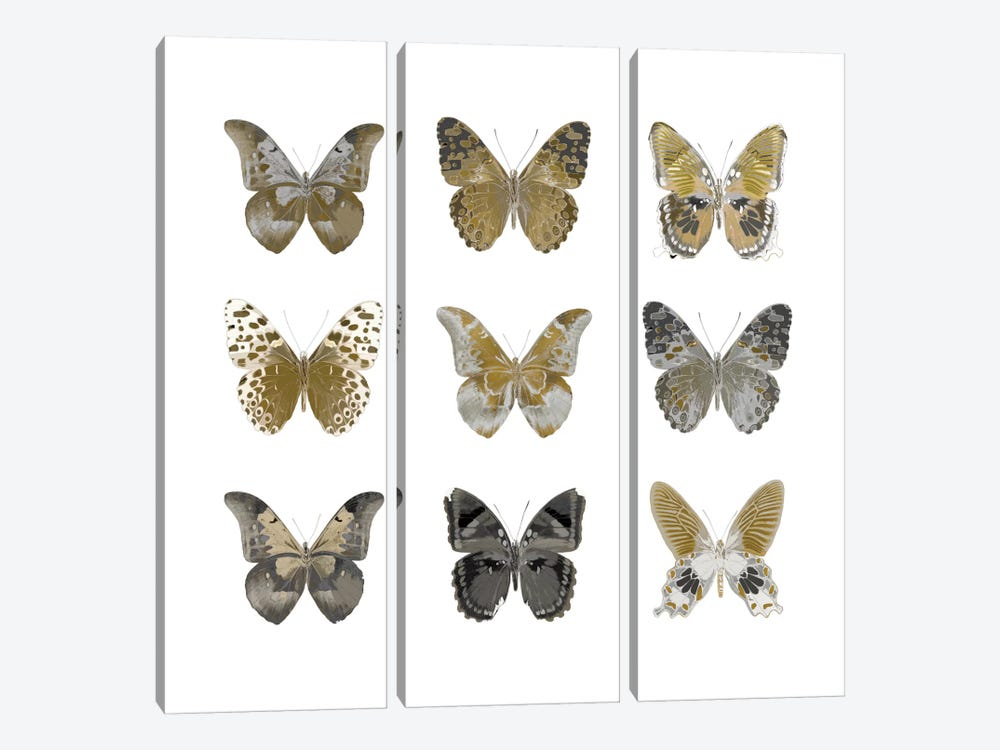 Butterfly Study In Gold I by Julia Bosco 3-piece Canvas Wall Art