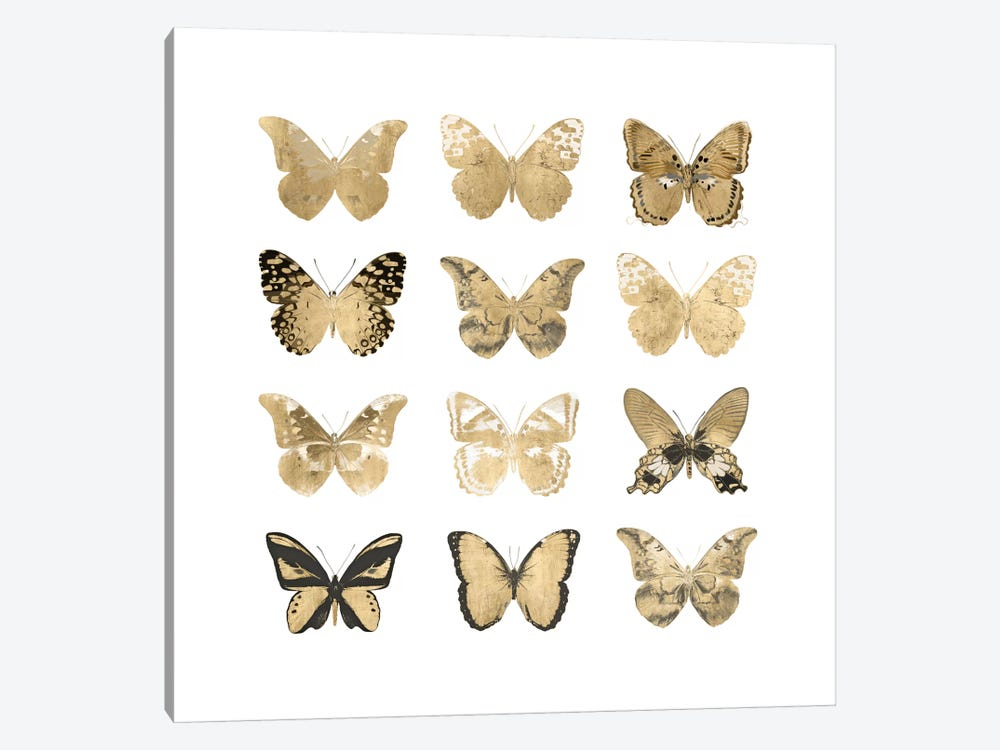 Butterfly Study In Gold II by Julia Bosco 1-piece Art Print