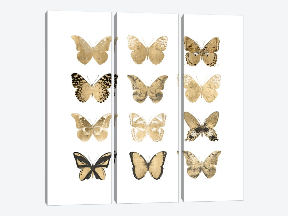 Butterfly Study In Gold II by Julia Bosco 3-piece Canvas Art Print