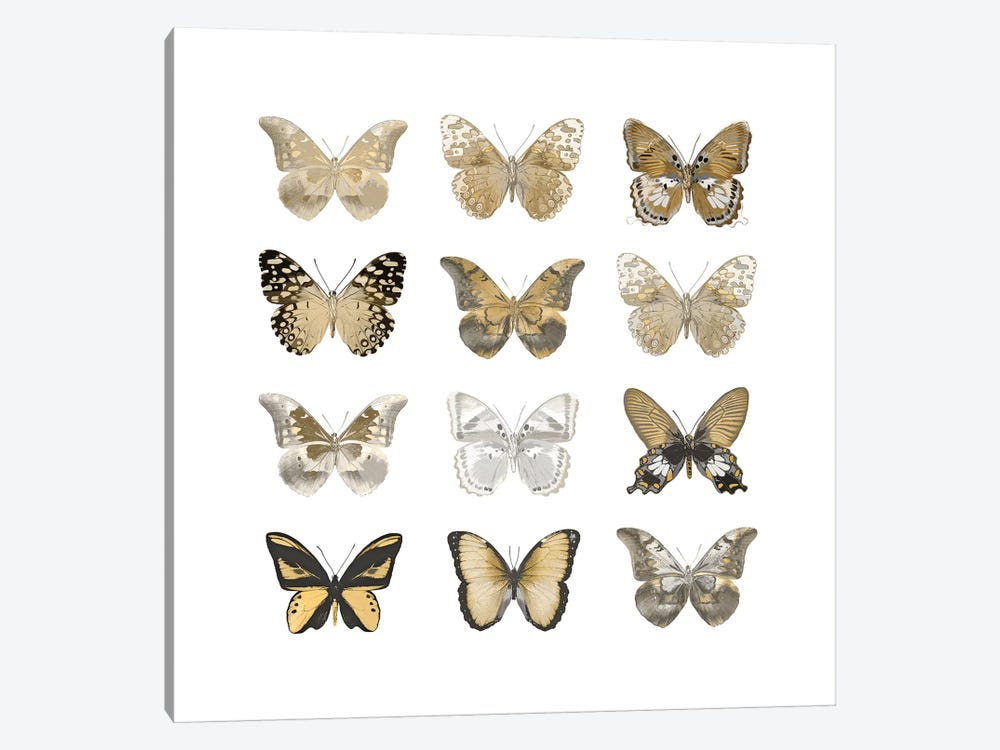 Butterfly Study In Gold III 1-piece Canvas Art