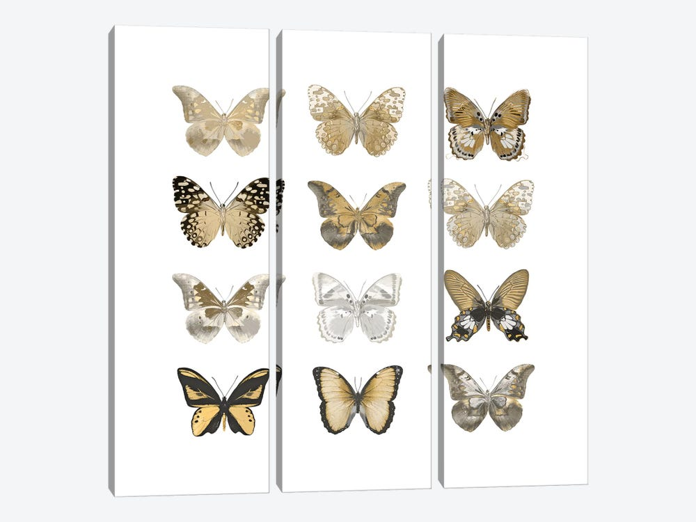 Butterfly Study In Gold III by Julia Bosco 3-piece Canvas Wall Art