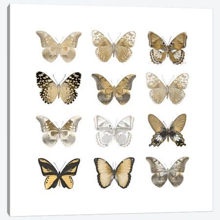 Butterfly Study In Gold III Canvas Print #JUL27} by Julia Bosco Canvas Artwork
