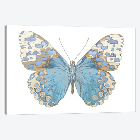 Butterfly With Indigo Canvas Print #JUL28} by Julia Bosco Art Print