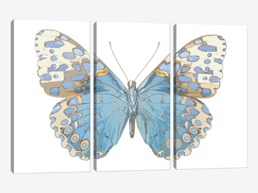 Butterfly With Indigo by Julia Bosco 3-piece Canvas Print
