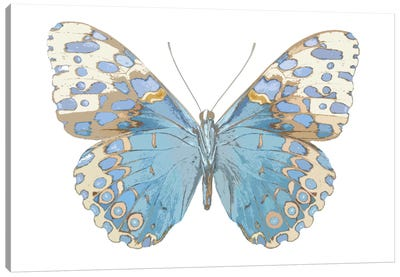 Butterfly With Indigo Canvas Art Print