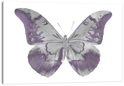 Butterfly In Amethyst I Canvas Print #JUL2