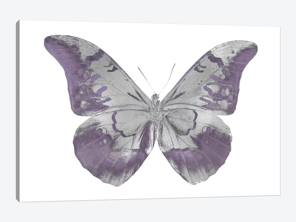 Butterfly In Amethyst I 1-piece Canvas Art Print