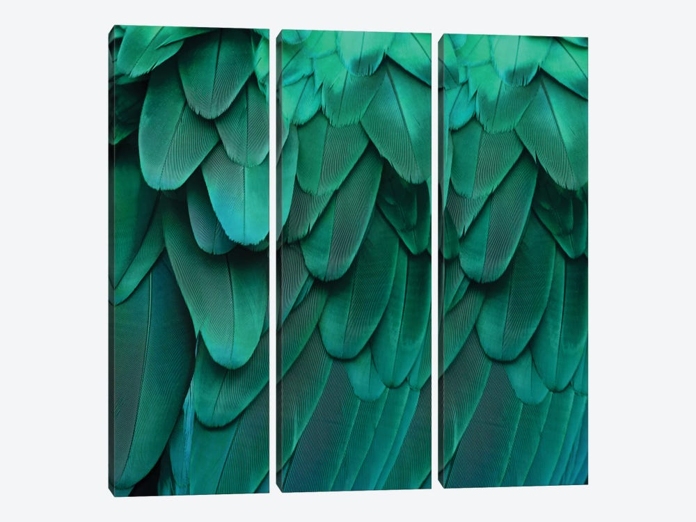 Feathered Friend In Aqua by Julia Bosco 3-piece Canvas Artwork