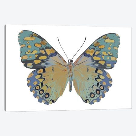 Butterfly In Amethyst II Canvas Print #JUL3} by Julia Bosco Canvas Art