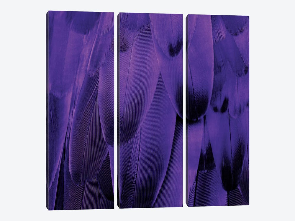 Feathered Friend In Purple by Julia Bosco 3-piece Art Print