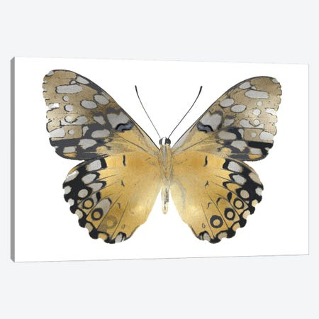 Golden Butterfly I Canvas Print #JUL42} by Julia Bosco Canvas Art Print
