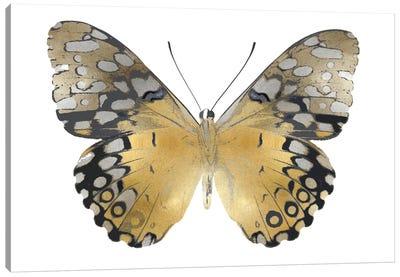 Golden Butterfly I Canvas Art Print