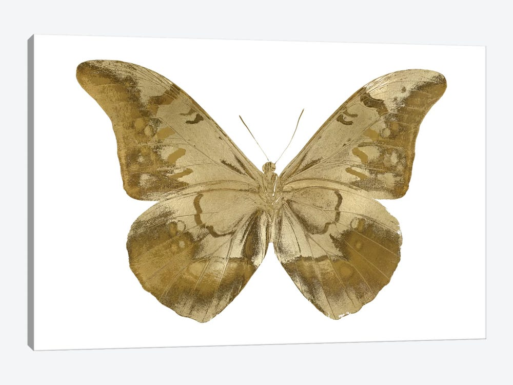Golden Butterfly III by Julia Bosco 1-piece Art Print